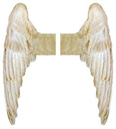 Printable Angel Wings: Can be used for paper dolls