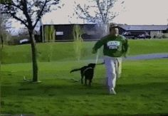 21 Best GIFs Of All Time Of The Week #137 from best GOAT and Best of the Web
