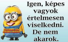 Funny Quotes, Funny Memes, Minions Quotes, Sarcasm, Bff, Haha, Comedy, Poems, Best Friends