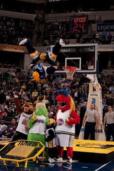 Boomer dunks over other mascots. Indiana Pacers 66127c9fc9b22