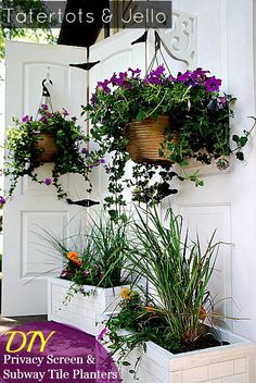 Outdoor screen with planters is perfect for privacy and to create walls to hang plants/decor on.