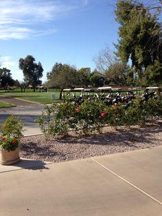 Scottsdale Golf Club Life's Been Good, Be Good To Me, Big Brother House, Stuff To Do, Sidewalk, Golf, Club, Plants, Side Walkway