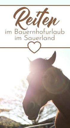 Auf dem Hof Köhne im Sauerland gibt es ein tolles Reitangebot. Man kann dort im Urlaub auf dem Bauernhof sogar ein Reitabzeichen machen. #reiten #bauernhof #urlaub #pferd