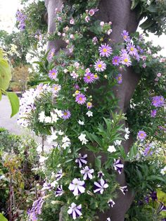 Verticaal tuinieren met een Vertiplant Pilaar
