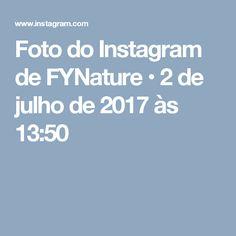 Foto do Instagram de FYNature • 2 de julho de 2017 às 13:50