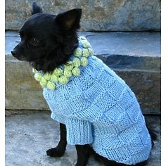 Isabella Cane blue pom sweater http://www.hsn.com/home-solutions/isabella-cane-knit-dog-sweater-blue-with-green-poms_m-10057738_xp.aspx