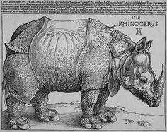 뒤러, < Rhinoceros > --- 사실주의 화가인 뒤러는 목판화를 통해 코뿔소의 모습을 사실적이고, 자세한 묘사를 통해 표현하였다. 당시 신기한 동물로 여겨져 사람들의 관심을 받았던 코뿔소를 뒤러는 소문으로만 듣고 귀동냥으로만 얻은 정보들을 모아 이 작품을 완성해내었는데, 실제 코뿔소의 모습과는 확연히 달랐지만 너무나 사실적으로 표현해내어 사람들은 뒤러가 그린 그림을 진실이라고 믿었고, 뒤러의 코뿔소는 하나의 '교범'으로 여겨졌다. 뒤러는 코뿔소의 몸과 철갑을 정교한 기하학적 패턴을 그려 넣어 정교하게 그려내었다.