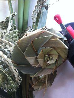Flax rose
