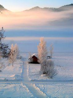 Wonderful winterland