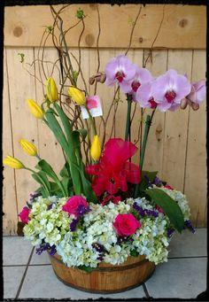 Orquídea y hortensias