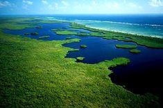 Reserva de Sian Ka'an, Tulum Mexico Vacation, Mexico Travel, Sea Turtle Species, Quintana Roo Mexico, Snorkel, Reserva Natural, Visit Mexico, Romantic Vacations, Beach Town