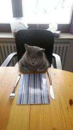 朝ご飯は〜?