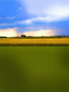 'Regen   |   Frühlingslied' von Dirk h. Wendt bei artflakes.com als Poster oder Kunstdruck $6.75