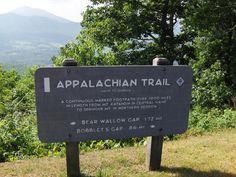The Appalachian Trail near the Blue Ridge Parkway. Blue Ridge Mountains, Virginia. Could spend a lifetime hiking it!