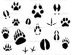 Buy Animal Footprints by VectorTradition on GraphicRiver. Set of animal footprints for ecology design. Editable (you can use any vector program) and JPEG (can edit in any. Deer Design, Animal Design, Animal Footprints, Ecology Design, Animal Tracks, Black Cartoon, Wood Burning Patterns, Bear Paws, Dremel