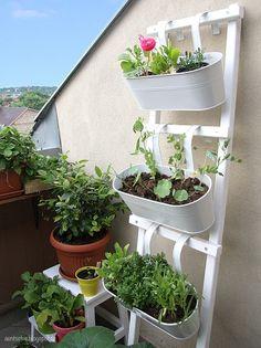 DIY: Blumenleiter bauen - Wohnen + Leben bei DaWanda