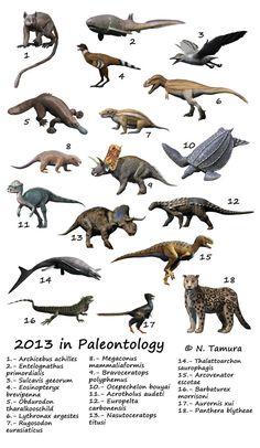 2013 in Paleontology by NTamura on deviantART