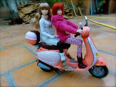 bike ride   Flickr - Photo Sharing!