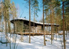 Forest house by Sanaksenaho Architects features a bean-shaped roof.
