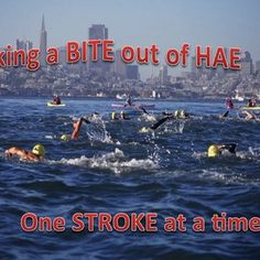 Take a Bite out of HAE One Stroke at a Time - Michael Ardito is a 14 year old high school student on a mission. For   the last 4 years his goal has been to raise awareness and money for   research to find a cure for Hereditary Angioedema. Both his step dad,   John Harrington and his sister Kati ...