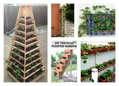 Strawberries can be easily grown in containers and various flower pots. In the post, we are going to present 10 DIY Ways to grow vertical strawberry garden.