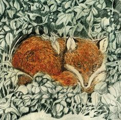 'Winter Shelter' (Fox) by Printmaker Sarah Bays. Blank Art Cards By Green Pebble. www.greenpebble.co.uk