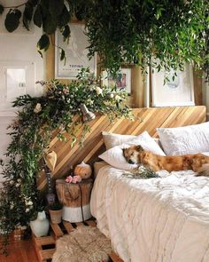 Love the latest indoor plant look? 5 Exciting Home Interior Design Trends to Watch Out for in 2019 - . : Love the latest indoor plant look? 5 Exciting Home Interior Design Trends to Watch Out for in 2019 - . Bohemian Bedrooms, Bohemian Interior, Trendy Bedroom, Bohemian Decor, Modern Bedroom, Bohemian Style, 60s Bedroom, Boho Chic, Jungle Bedroom