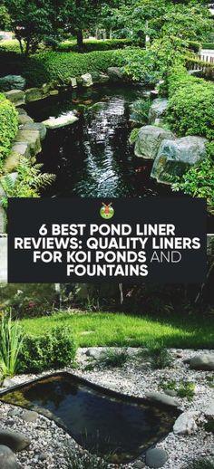 reminds me of my childhood fishpond snake fish ideas pinterest rh pinterest com Koi Pond Drawing Koi Pond Blueprints