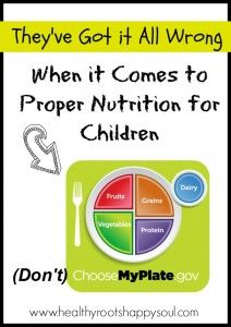 They've Got it All Wrong When it Comes to Proper Nutrition for Children - Healthy Roots, Happy Soul