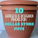how-to-upcycle-cheap-flower-pots-container-gardening-crafts-gardening Plastic Plant Pots, Plastic Flower Pots, Plastic Planter, Flower Planters, Cheap Planters, Outdoor Planters, Tall Planters, Modern Planters, Concrete Planters