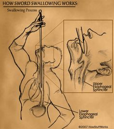 Literally considering learning sword swallowing!! I think this is amazing, I love everything about it! Its so simple yet so dangerous♥