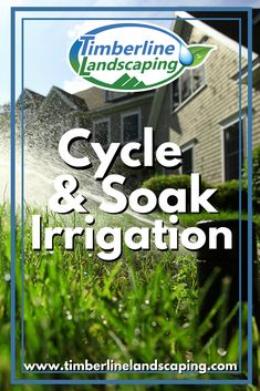 July is smart irrigation month and part of being smart with irrigation means reducing water run off from your sprinkler system. One useful method of reducing water run off is called cycle and soak irrigation. Residential Landscaping, Home Landscaping, Landscape Design, Garden Design, Sprinkler, Irrigation, Sustainable Living, Sustainability, To Go