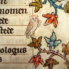 A 14th-century owl with a big smile on his face
