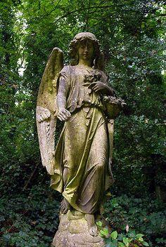 angel in Highgate Cemetery in London Cemetery Angels, Cemetery Statues, Cemetery Art, Highgate Cemetery London, Old Cemeteries, Graveyards, I Believe In Angels, Angeles, Angels Among Us