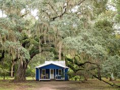 That old zombie charm Cool Sheds, Ny Times, Savannah Chat, Places To Visit, United States, Cabin, Charmed, Island, House Styles