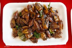 Tasty Laotian #insect snack
