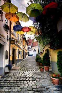 Szentendre, Hungary, nice little town. i didn't see the umbrellas when we were there 3 years ago.