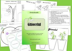 ghiocelul Preschool Fine Motor Skills, Life Cycles, Fall Decor, Projects To Try, Paper Crafts, Classroom, Activities, How To Plan, 8 Martie