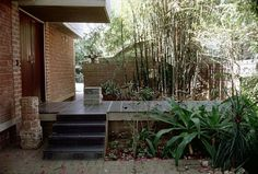 B. V. Doshi  - Doshi House_02 Rose Bush Care, Insect Species, Ecology, Habitats, Entrance, Lawn, Backyard, Exterior, Nature
