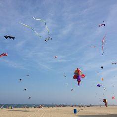 Ocean City, MD Kite loft on the boardwalk