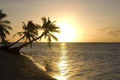 Samoan beach sunset