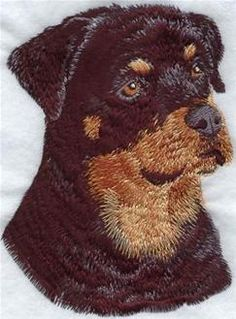 Machine Embroidery Designs at Embroidery Library! Machine Embroidery Quilts, Brother Embroidery Machine, Machine Embroidery Projects, Embroidery Software, Quilting Projects, Cross Stitch Embroidery, Embroidery Ideas, Chien Shih Tzu, Embroidered Quilts
