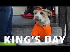 King's Day Amsterdam- Peace, Love & Orange