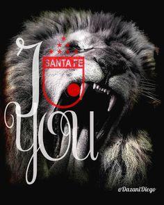 Hoy hay que ganar !!! Arctic Monkeys, Neymar, Fes, Santa Fe, Molde, Lion Art, Lion, Crib, Caricature
