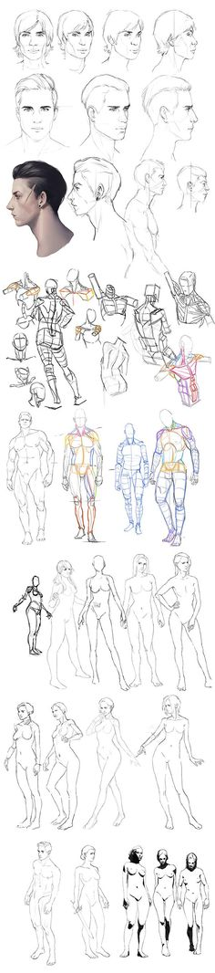 Anatomy practice by mannequin-atelier on DeviantArt