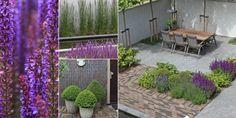 Tuinaanleg Vijfhuizen - Biesot tuin ontwerp, aanleg en tuin onderhoud