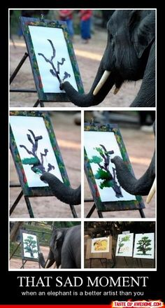 That sad moment when an elephant is a better artist than you.  Yup…pretty sad