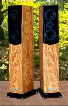 Salk Songtower floor standing speakers in Olivewood High End Speakers, Tower Speakers, Bookshelf Speakers, Speaker Stands, Built In Speakers, Audiophile Speakers, Hifi Audio, Audio Speakers, Floor Standing Speakers