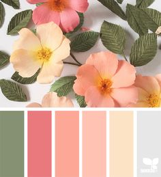 Ideas Bedroom Colour Schemes Green Design Seeds For 2019 Color Schemes Colour Palettes, Colour Pallette, Color Combos, Color Palette Green, Peach Color Schemes, Summer Color Palettes, Spring Color Palette, Summer Colours, Nature Color Palette