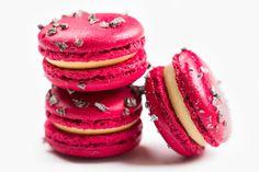 Chriatmas Vanilla Macarons - DeToni Patisserie and Bakery Macarons